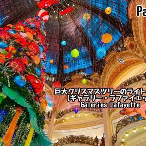 パリの百貨店【ギャラリー・ラファイエット】巨大クリスマスツリーのライトアップ2020年 Galeries Lafayette