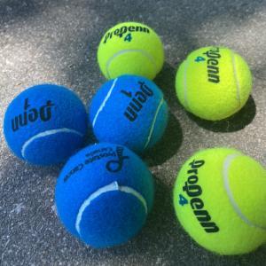 #18 コロナ禍トロントでの生活とテニス