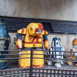 スターウォーズ ギャラクシーズエッジを東西ディズニーに行って比較!(2019年DLR/WDW #6)