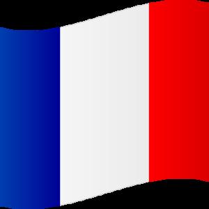 フランスを捨てる?は試験を制す!
