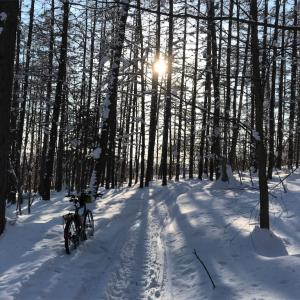 2021年、ちょっと遅めの走り初めは快晴ながら雪の中。