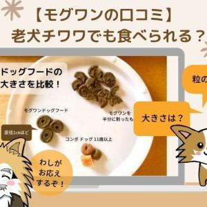 【モグワンの口コミ】老犬チワワでも食べられる?
