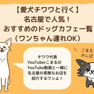 【愛犬チワワと行く】名古屋で人気!おすすめのドッグカフェ一覧(ワンちゃん連れOK)