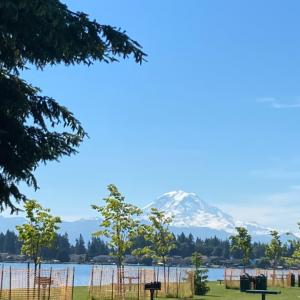 North Lake Tapps Park