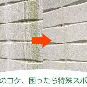 外壁についたコケ、落とすのは洗剤なし、水だけ。ただしアズマ工業AZ655は必須。