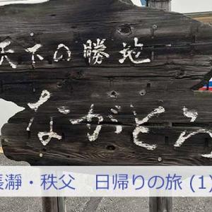 【長瀞・秩父】お得な電車チケットでマイナスイオンを浴びてくる日帰りの旅。帰りはSL列車(1)