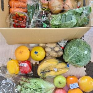 全21品!初めて頼んだ野菜&果物ボックスが期待以上にお買い得だった。