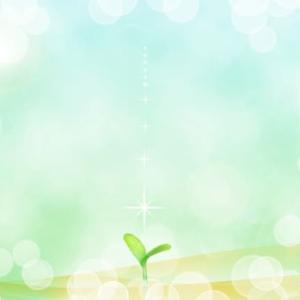 乙女座新月!仕事面でいい変化を期待できる配置⭐︎癒しがカギ!