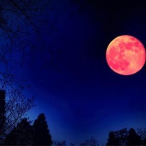 射手座満月スーパームーン!手放しを決意し、大きな運を引き寄せる!