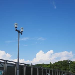 昨日の入道雲を眺めながら、美少女なら許されるのにと思った朝