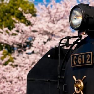 【家族みんなが大満足】静岡大井川鉄道と寸又峡温泉がある奥太井の旅はみんながしたい事が一度にできる旅