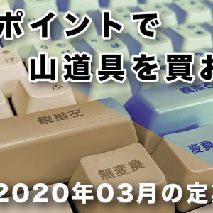 【企画】楽天ポイントの2020年03月、定期報告 #02