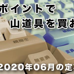 【企画】楽天ポイントの2020年06月、定期報告 #05