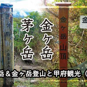 【山旅】茅ヶ岳&金ヶ岳登山と甲府観光(登山編)