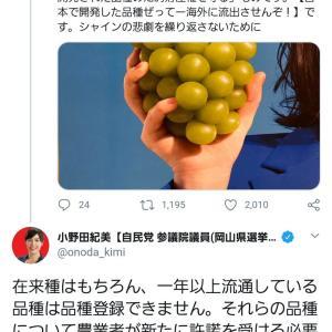 柴咲コウさん、完全論破され絶体絶命のピンチw