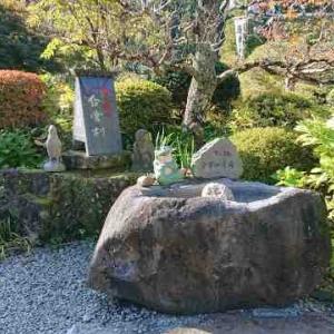 岐阜県下呂市 下呂温泉合掌村が面白くてけっこう楽しめた話
