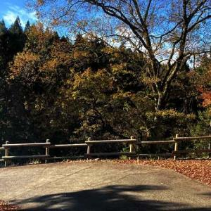 岐阜県大垣市 紅葉で有名な多良峡森林公園でいい出会いをしてきたw