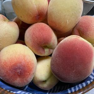 桃と梅の収穫♪