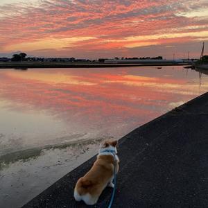 朝から晩まで☆風景がきれい♪