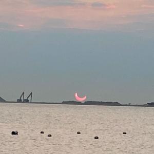 今月、日食と月食が観られるらしい!