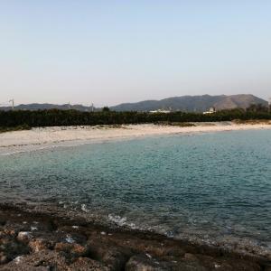 金武町屋嘉ビーチをお散歩してみた。