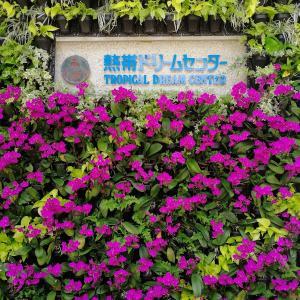 熱帯ドリームセンターの見所・お得情報レポート