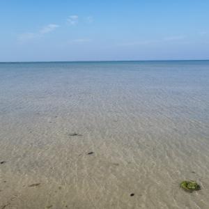 北名城ビーチに行ってみた。キャンプもできる貴重な自然のビーチ。