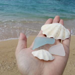 名護市民ビーチに行ってみた。貝殻やシーグラスがあるロングビーチ。