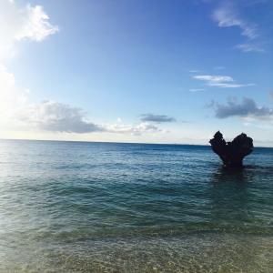 初めての沖縄!押さえておくべき観光スポット!