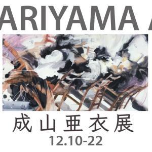 成山亜衣 個展 NARIYAMA Ai Exhibition 2019年12月10日(火)- 22日(日)12時〜18時(月曜日休廊)