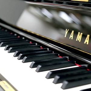【来て見て】【And】【聞いてYO♪】♡♥♡【画像】Pan Pianoさん、露出が少ないと再生されない