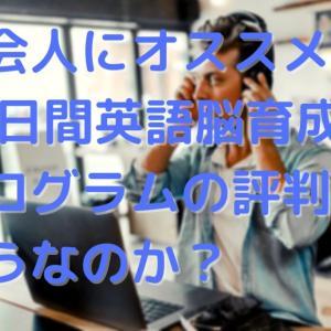 社会人にオススメ!30日間英語脳育成プログラムの口コミはどうなのか?
