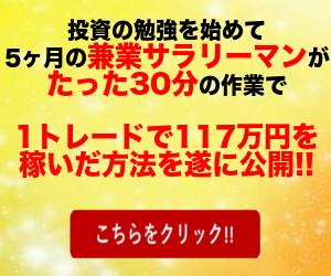 バーチャルトレーダーFX【仮想通貨FXプログラム】