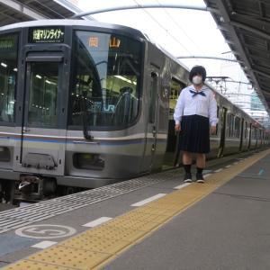 JR四国 普通列車とともに