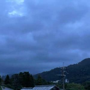 雲は厚い。伴さんがなくなった。