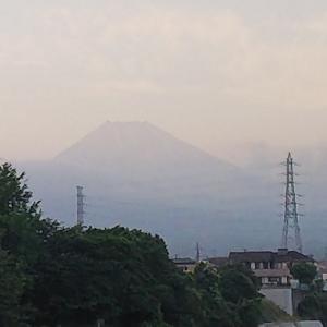 今日の富士山&共働き弁当&冷やし中華!