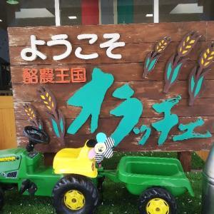 函南町「酪農王国 オラッチェ」朝市に行ってきました!