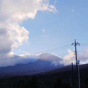 富士山&黒米弁当など