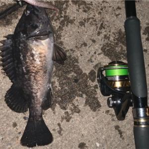 みんなの北海道釣り情報【函館市万代埠頭】まだまだ釣れるぞクロソイ!使用ワームの種類も詳しく聞いてみた!