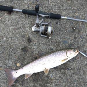 みんなの北海道釣り情報【釧路市付近】白い斑点が特徴的な魚が釣れた!!やはりあの釣り師は態度がヤバい、、
