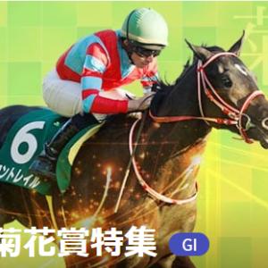G1菊花賞 馬場別有力馬診断