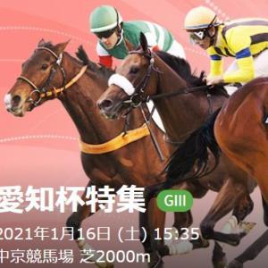 牝馬限定ハンデ重賞「G3愛知杯(中京芝2000m左回り)」血統・戦歴傾向分析レポート