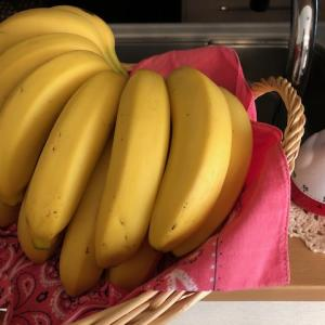 バナナ、いくらだと思います?