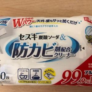 <100均ダイソー>防カビ剤配合クリーナーでカビ菌さようなら