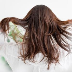 髪、いつ切る?伸び続ける髪をどうするか