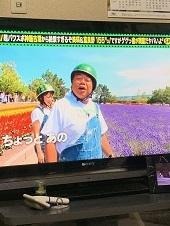 武蔵の面白写真(笑)