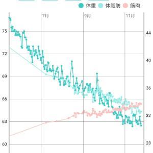 体脂肪率 推移