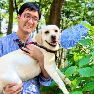 【大型犬の膀胱炎】発症・再発・治療・完治までの記録
