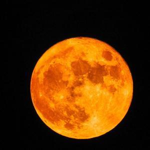 新シリーズ「秋を撮る」~中秋の名月