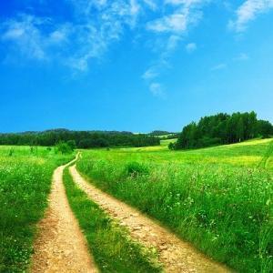 やはり一人だと袋小路、先達の先生の言葉は道先案内になり、暗闇を照らし、道を指し示す